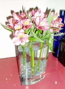 Flowersweek1